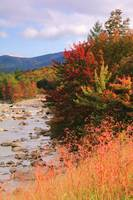 Autumn River, White Mountains, New Hampshire