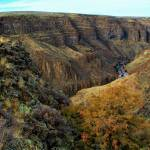 """Bruneau Canyon near East Fork"" by GregStringham"