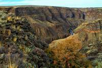 Bruneau Canyon near East Fork