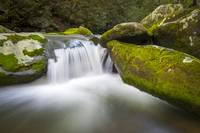 Roaring Fork Great Smoky Mountains National Park -