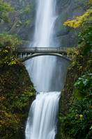 Fall at Multnomah Falls