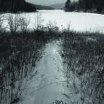 """Path to the Frozen Lake"" by chrisromano"