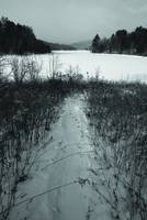 Path to the Frozen Lake