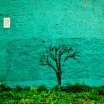 """Pas de Graffitis"" by arwenberg"