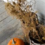 """Historic Autumn Decor"" by WildAboutNaturePhotography"