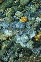Close-up of riverbed through clear water flowing