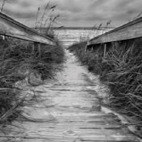 Boardwalk to Ocean Art Prints & Posters by Tammy McKinley