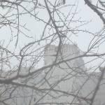 """Snow fog frame 1"" by Kosmopolites"