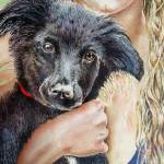 """Vincent-Black Lab and Girl"" by brittenham"