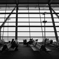 Pudong Airport Art Prints & Posters by William Fehr