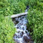 """Mountain Creek"" by greencricketphoto"