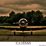 """T-6 Texan"" by pursuitpux"