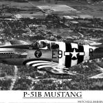 """P-51B Mustang"" by pursuitpux"