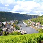 """Mosel River"" by greencricketphoto"