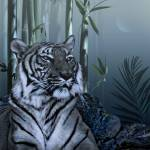 """Tiger in Bamboo Forest"" by spadecaller"