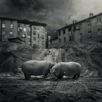 .workers. Art Prints & Posters by Michal Giedrojc