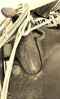 Saddle and Rope