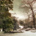 """November Snow"" by JessicaJenney"