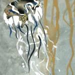 """""""Deep Jellyfish Voyage"""" by pirateforpeaceprints"""