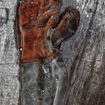 """The Glove"" by McCarthys_PhotoWorks"