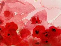 Watercolor Poppies