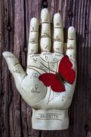 Palm reading hand and butterfly