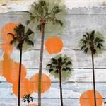 """California"" by Aneri"