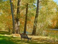 Spot To Enjoy The Autumn Season