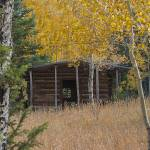 """_IGP3797.Elkhorn cr. cabin in Aspens"" by SamSherman"