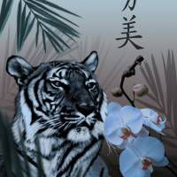Enchanted Tiger by I.M. Spadecaller