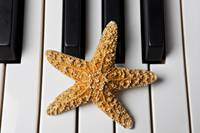 Starfish Piano