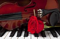 Violin and rose on piano