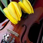 """Tulips and Violin"" by photogarry"