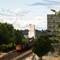 A Train Runs Through It... by Patricia Schnepf