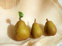 Shelled Pears