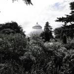 """""""New York Botanical Garden"""" by JeremyHermanPhoto"""
