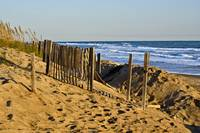 kdh_dune_fencing copy
