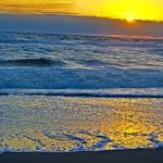 """kdh_golden_beachsunrise copyb"" by dennisgorman"