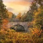 """""""Botanical Bridge"""" by JessicaJenney"""