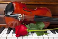Violin with rose on piano