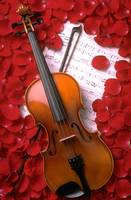 Violin on sheet music with rose petals