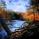 """dream river"" by markashkenazi"