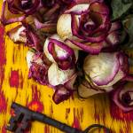 """Dried pink roses and key"" by photogarry"