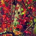 """""""Hobbits Garden"""" by ralphnelsen"""