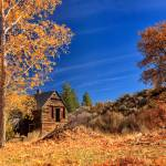 """The Old Bunkhouse Landscape"" by jameseddy"