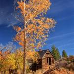 """""""The Old Bunkhouse Portrait"""" by jameseddy"""