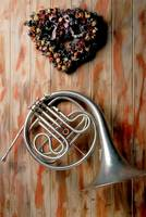 French horn hanging on wall