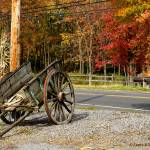 """New England Apple Cart"" by LauraD"
