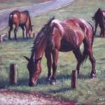 """three new forest horses on grass"" by martindavey"