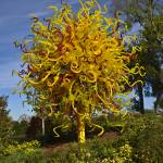 """Chihuly - The Sun"" by awsheffield"